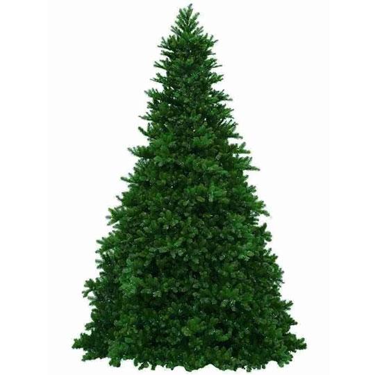 Grand Teton Christmas Tree