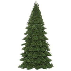 Oregon Fir Frame Christmas Tree, Unlit