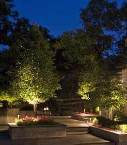 Uplights For Lighting Trees