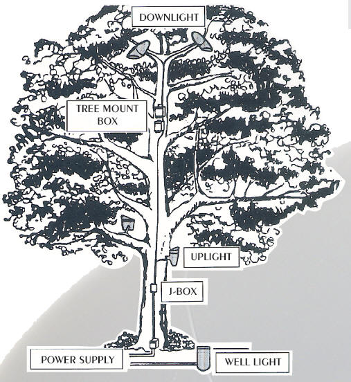 Mercury Vapor Tree Lighting