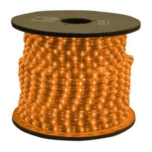 LED Flexible Rope Reel (120V)